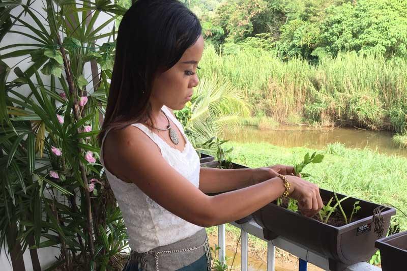 Apple tending to her Thai herb garden
